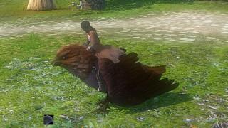 Icarus Guardian育成日記Part5 ~LV8 空飛ぶペットを獲得!~