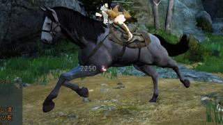 野生の馬の捕まえ方【黒い砂漠Part31】