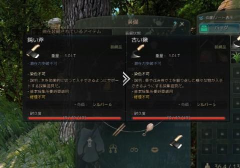 採集に挑戦01