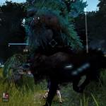 愚鈍な木の精霊 / ウィークリークエスト【黒い砂漠Part89】