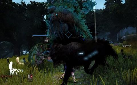 愚鈍な木の精霊05