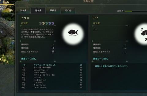 魚類図鑑02