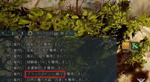 銀の鍵04