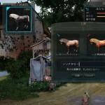 2世代LV30♂+2世代LV20♀=4世代♀【馬交換の結果Part08】