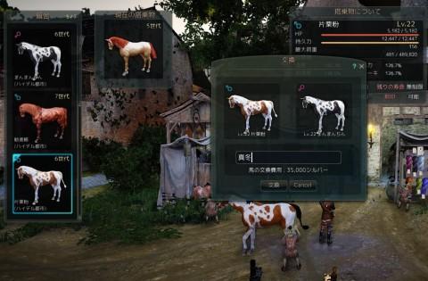 7世代白馬に挑戦04