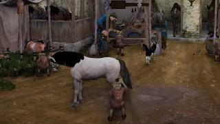 馬交換馬交配の纏め / 目次
