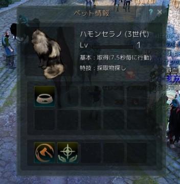 久しぶりの猫交換02