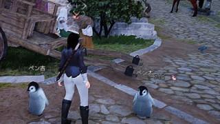 迷子ペンギンを入手したので合成開始【黒い砂漠Part317】