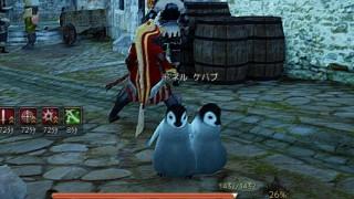二匹目のペンギン合成です / 一世代同士【黒い砂漠Part344】