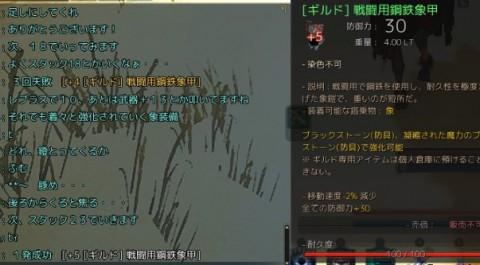 象の装備強化03