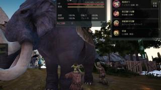 3頭目の象さんのスキルは高速走り【黒い砂漠Part373】