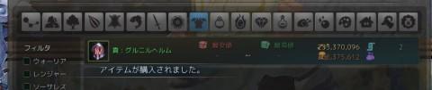 グルニルIVの購入に成功02