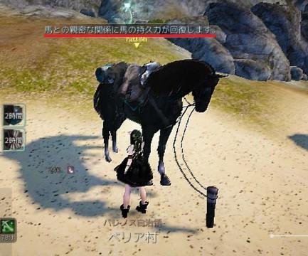 馬と交感02