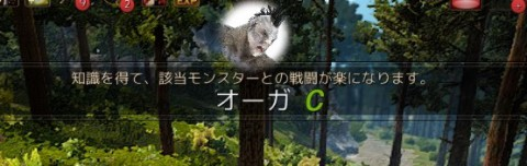 オーガの知識厳選01