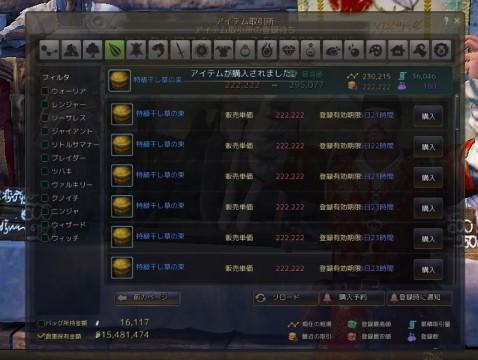 栽培に再挑戦01