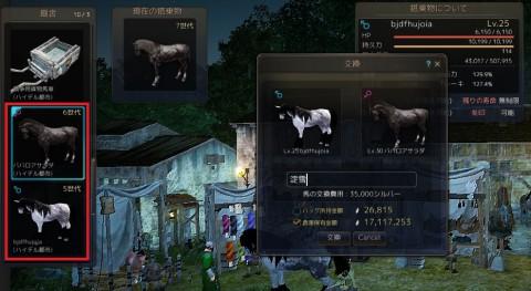 馬交換淀雪01