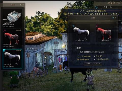 馬交換黒空01