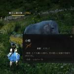 新しい小象さんが誕生しました今度こそ目指せスキルコンプ【黒い砂漠Part897】