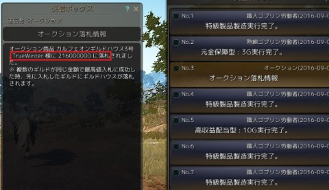 カルフェ3号落札01
