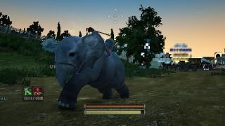小象(荷車象)の入手方法と必要なアイテム(費用35M)【黒い砂漠Part883】