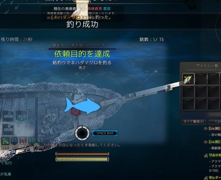 黄金真珠後1個のために釣りウィークリーやったら帰りに幽霊船からDROPした【黒い砂漠Part1116】