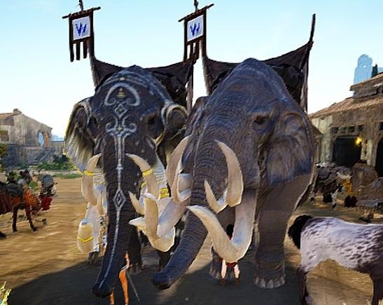 突進象さん(旧)と前足蹴りカードリア象でバトル比較【黒い砂漠Part1389】