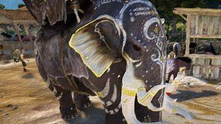 カポティア装備に引き続きカードリア象さんが誕生しました【黒い砂漠Part1388】