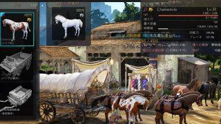 馬市場をぼーっと眺めててふと気付いたこと【黒い砂漠Part1371】