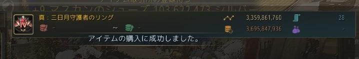 三日月守護者のリングIV購入成功01
