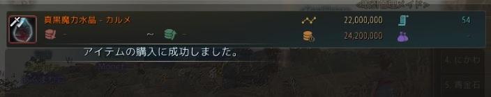 真黒カルメ水晶を購入成功02