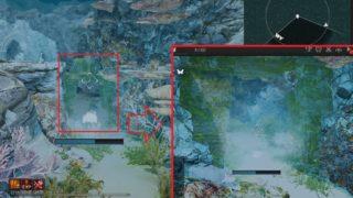 シクライア海底遺跡(上層)の入り口の場所とデイリークエスト3種【黒い砂漠Part2105】