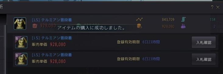 テルミアン普段着の購入に成功01
