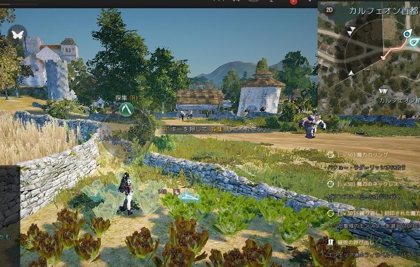 バルタリの冒険日誌5章薬草水の作り方とキャベツの場所01