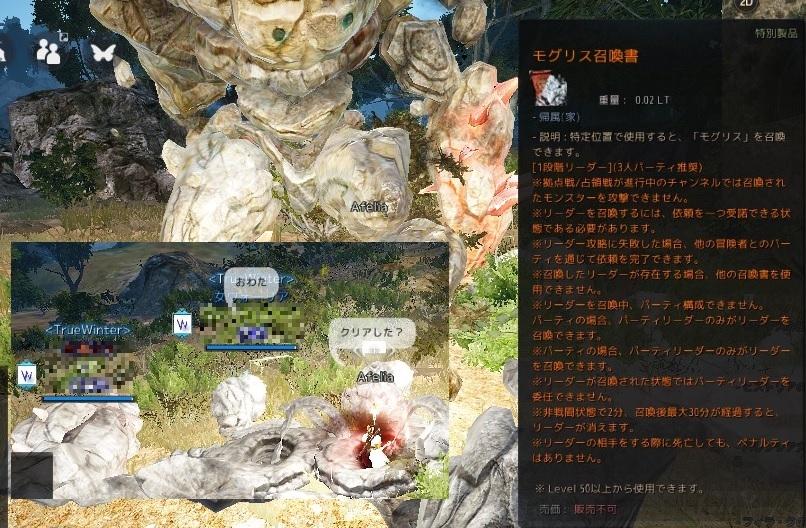バルタリの冒険日誌9章で3種のアクセ集めとグルニル作成09