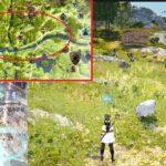 バルタリの冒険日誌7章 / 千年草の簡単な入手方法と迷子の羊の場所【黒い砂漠Part2262】