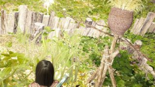 栽培で畑にカカシを設置してみようかなと思いました【黒い砂漠Part2366】