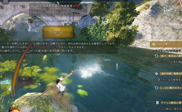 ハイデル前のデミ川の同じ場所で淡水カモメ発見しました02