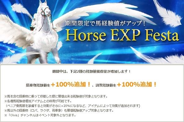 馬経験UPイベント