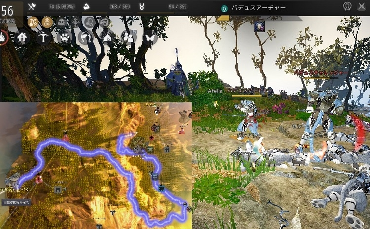シャイでLV56までのレベル上げで効率がいい狩場ルートを紹介【黒い砂漠Part2506】