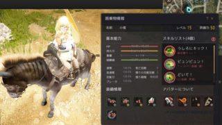 シャイも馬に乗れるようになったけどロバの装備を強化してきた【黒い砂漠Part2546】