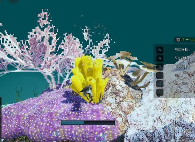 黒い 砂漠 珊瑚 の 欠片