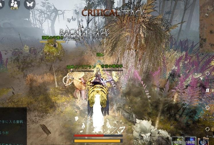 クバリアクの沸きボスを倒しにトシュラ廃墟で馬狩りしてきた02