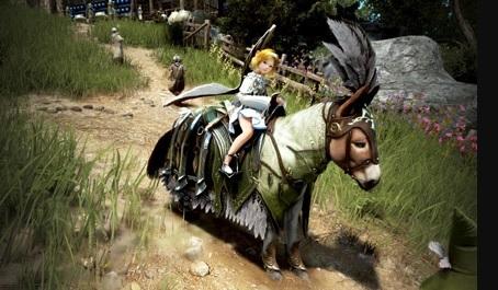 ロバ用のグランベル馬具