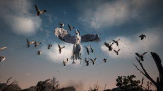 定期メンテ後情報 / 嵐を詠うカランダと嵐の力を秘めたカランダの心臓(12/09)